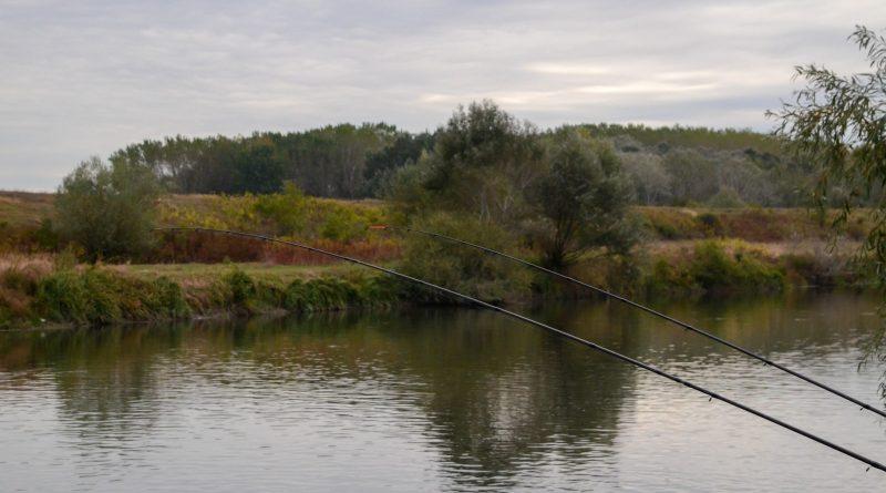 abordare partida de pescuit la feeder