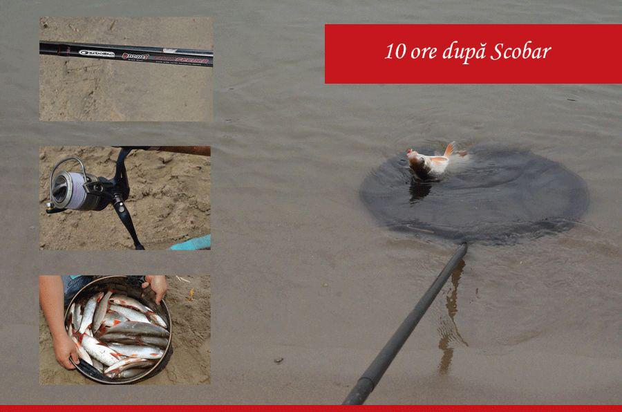 pescuit la feeder la scobar