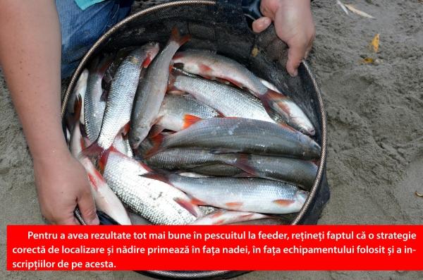 nada de pescuit - rezultatele pe care le poate aduce