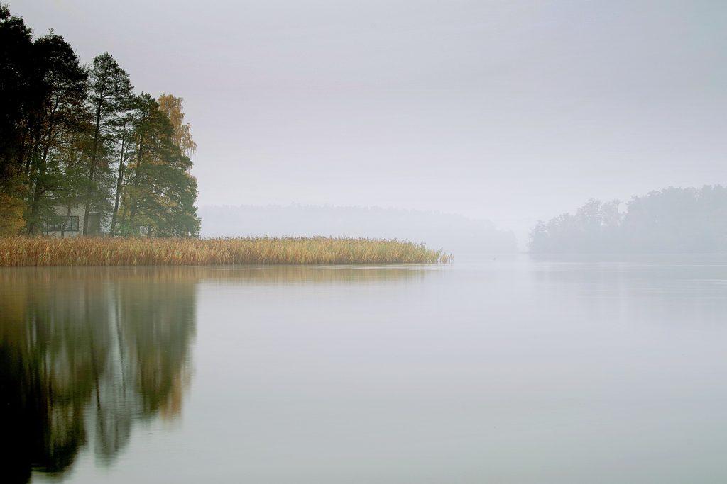 pescuit la feeder pe apa rece
