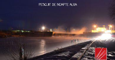Pescuit de noapte albă- Cernavoda – la Apa Calda