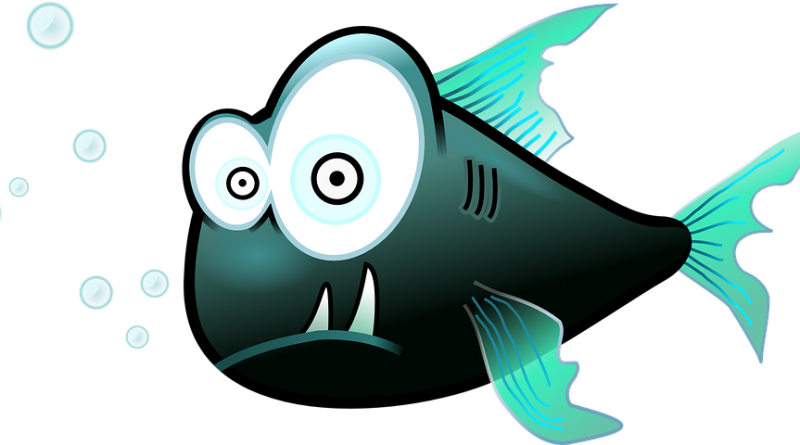 bancuri si glume despre pescuit