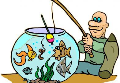 Glume si bancuri despre pescuit