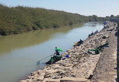 Campionatul mondial de pescuit la feeder, pe cluburi