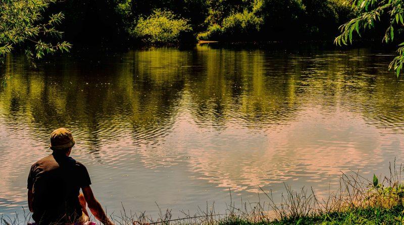 pescuitul la feeder