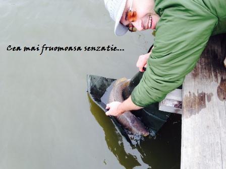 Pescuit la feeder pe Măgura 9