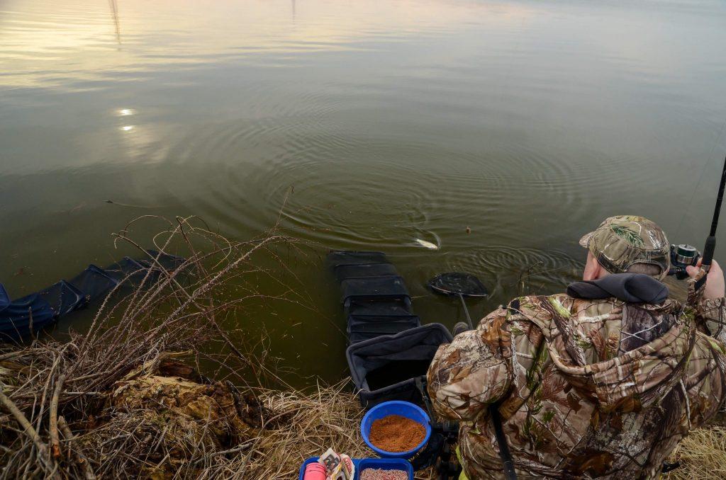 pescuit la feeder la platica