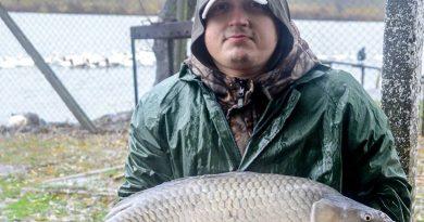 pescuit la feeder la greaca cercani - crap record