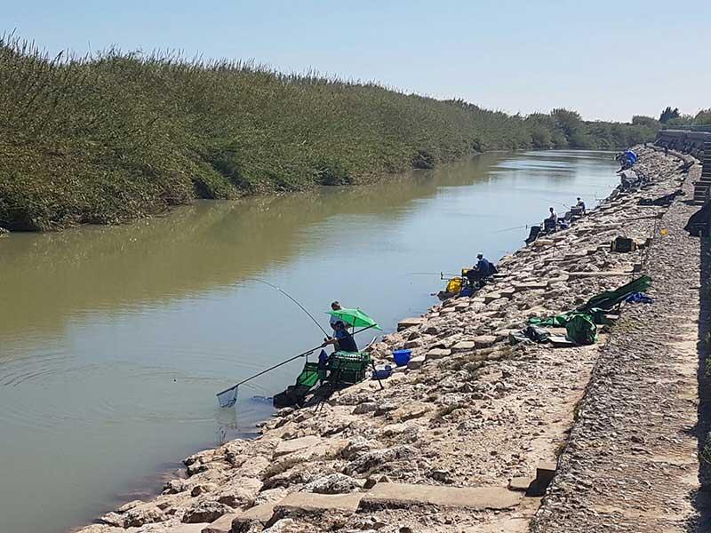 campionat modial pe cluburi de pescuit la feeder