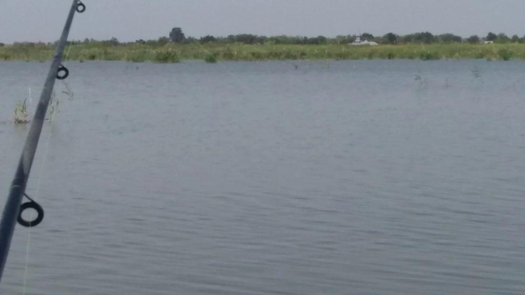 pescuitul la feeder te face sa uiti de tot