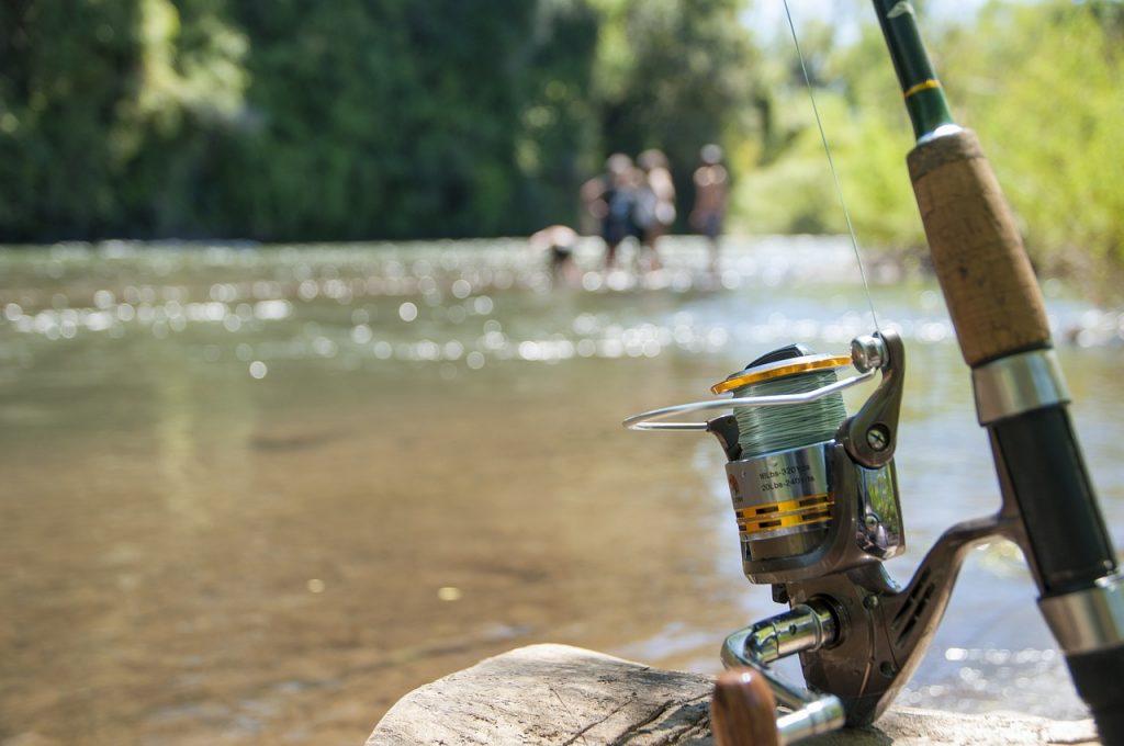 pescuitul la feeder pe rau